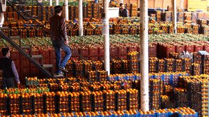 A view of fruit market in the northern Iranian city of Tonekabon.
