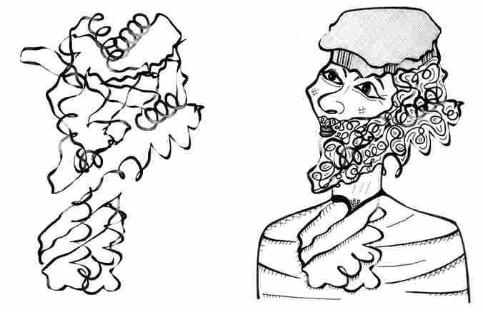 Lipoate-Protein Ligase A - Pashtun man