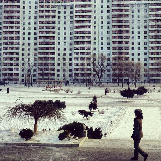 """A female soldier looks across a frozen park in front of an apartment block in #Pyongyang, North Korea."""