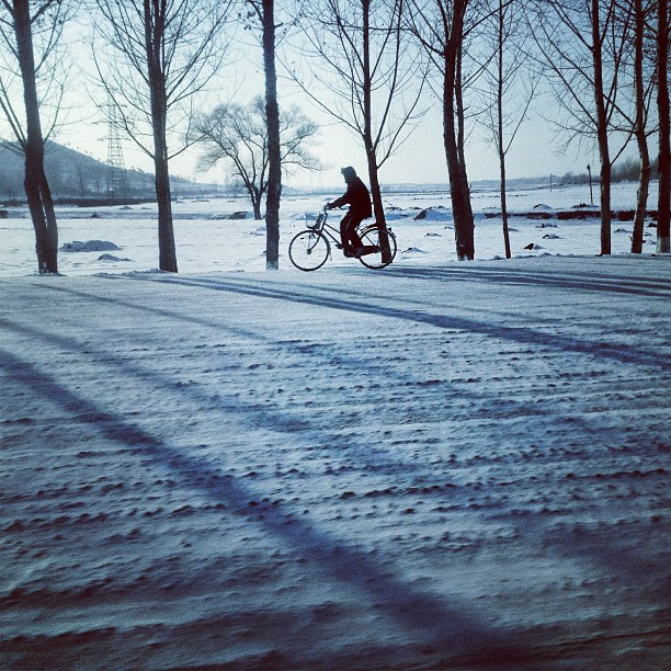 """A bicyclist rides along a snowy rural highway on the outskirts of #Pyongyang, North Korea."""