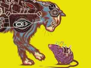 Cover of Frankenstein's Cat