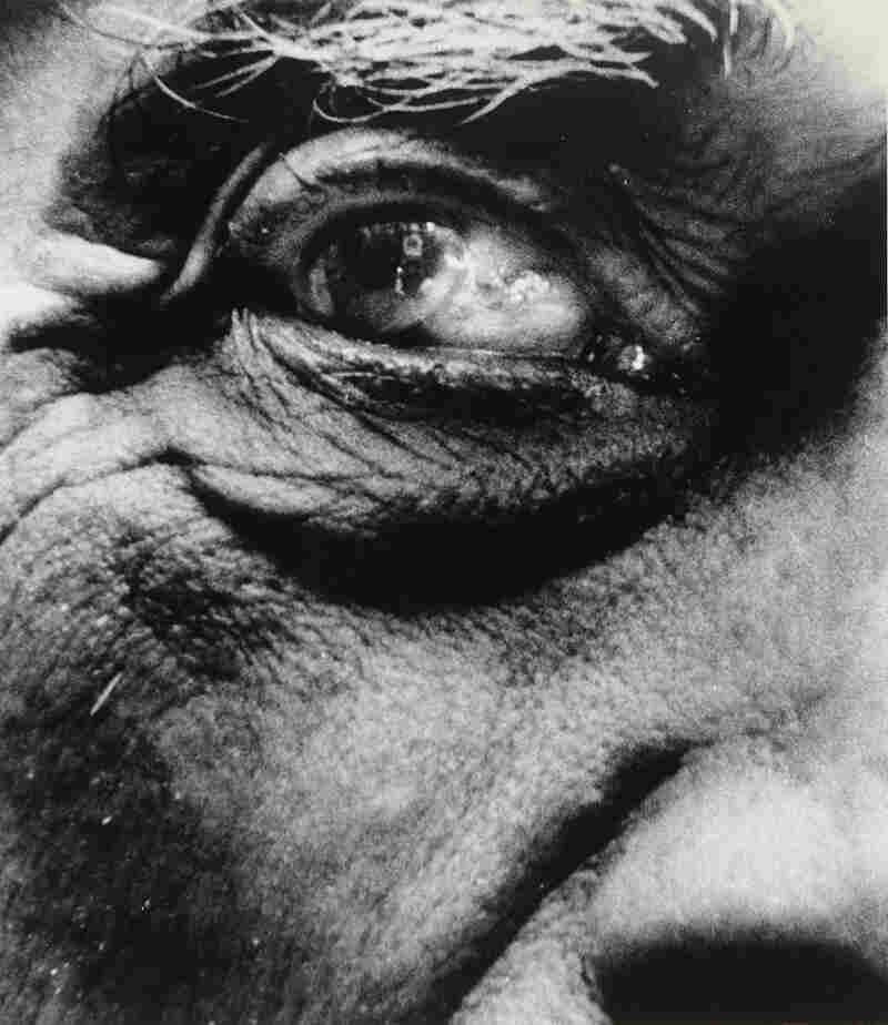 Georges Braque, 1960