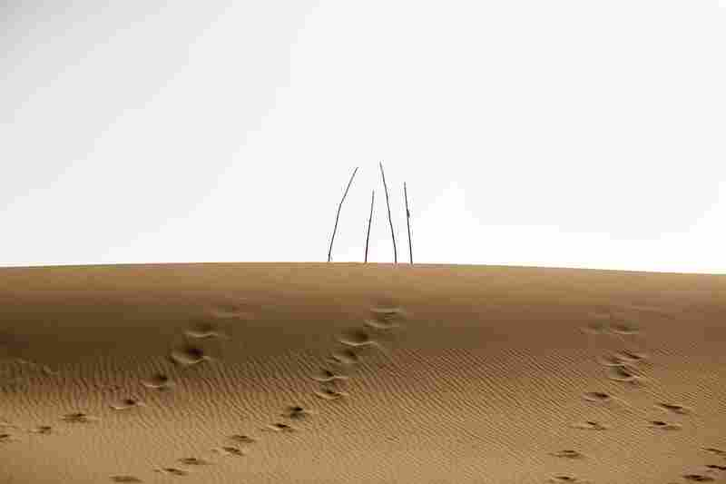 Unrevealed, Site 12 (Four Branches), 2009. Footprints lead up to four bare holy markers in the dunes.