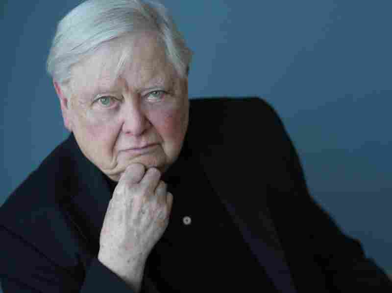 William H. Gass has been writing stories, novels and criticism for more than 50 years.