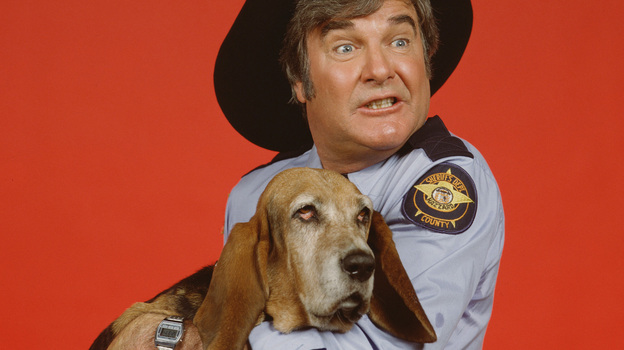 "James Best played Sheriff Rosco P. Coltrane, the bumbling minion of Jefferson Davis ""Boss"" Hogg, a corrupt county commissioner and the show's Big Bad. Rosco's dog Flash was played by a basset hound named Sandy. (Getty Images)"