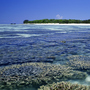 Heron Island is located on the southern end of the Great Barrier Reef, about 25 miles off the northeast coast of