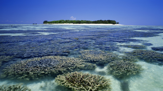 Heron Island is located on the southern end of the Great Barrier Reef, about 25 miles off the northeast coast of Australia. (Getty Images)