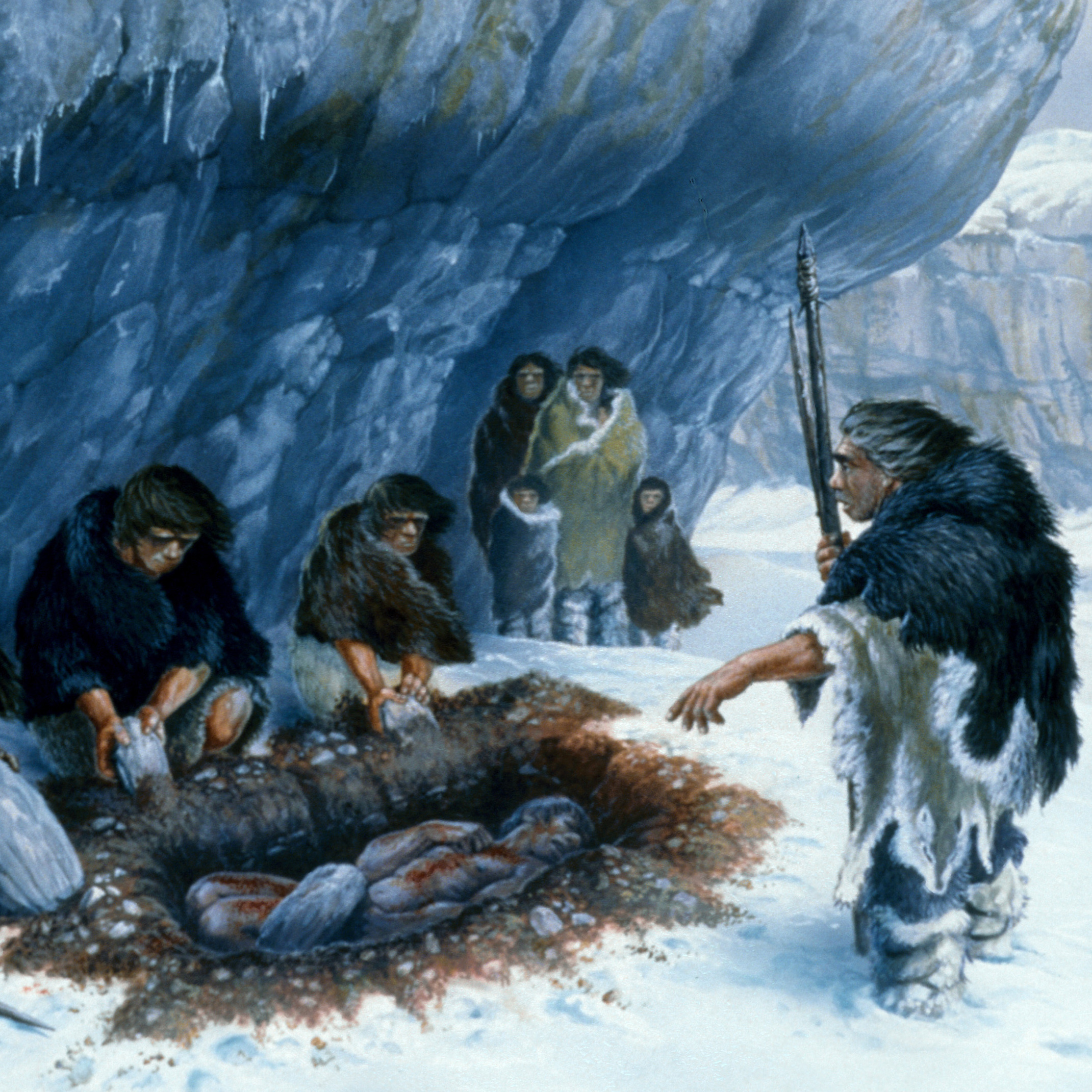 Neanderthal burial illustration