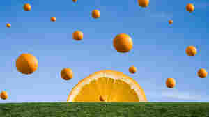 Marches Madness: Freshly Squeezed Oranges In 4/4 Time