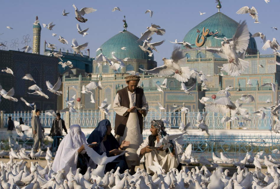 Afghans feed pigeons at the Shrine of Hazrat Ali in northern Afghanistan, 2009. (AP)