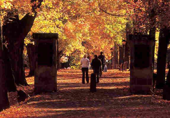 Kenyon College is a liberal arts college in central Ohio.