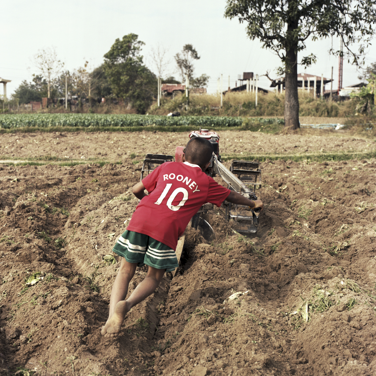 10-year-old Bounphang Sihavong helps out on the family farm.