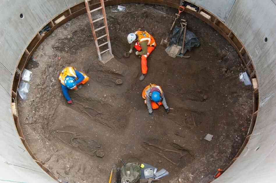 Archaeologists examine skeletons thought to be from the 14th century that were discovered in an excavation belonging to British rail company, Crossrail.