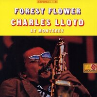 cover art to Forest Flower