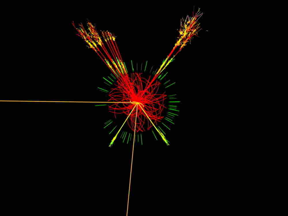 This is what researchers at the ATLAS detector at the Large Hadron Collider expect a Higgs boson to look like. The Higgs boson is the subatomic particle that scientists say gives everything in the universe mass.