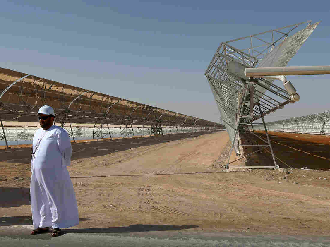 Rows of parabolic mirrors at the Shams 1 plant in Abu Dhabi.