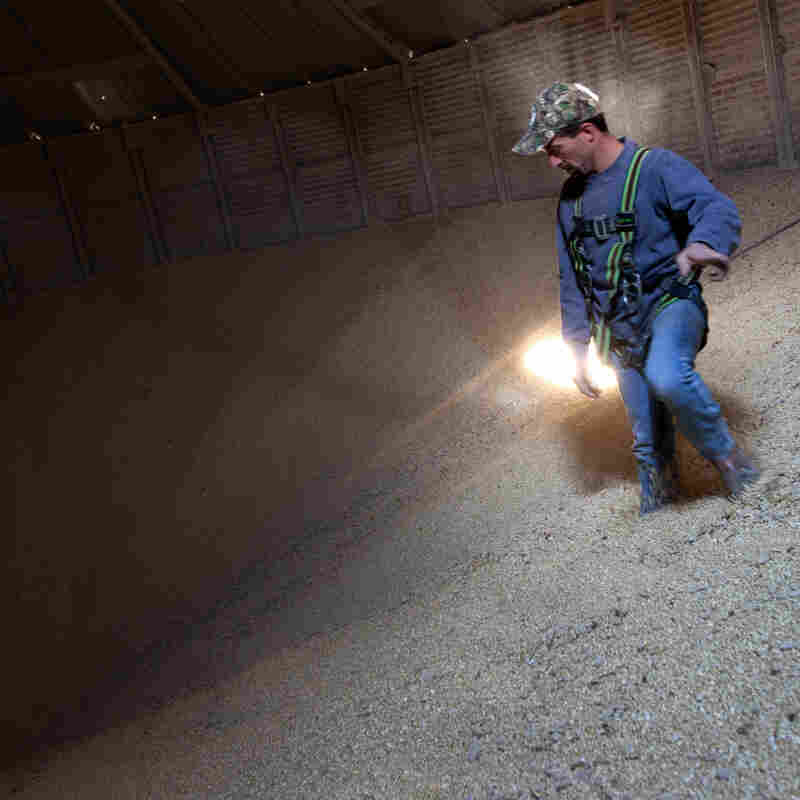 Grain Operator Austin Clubb surveys corn inside the Homestead Grain Facility at Amana Farms near Cedar Rapids, IA.