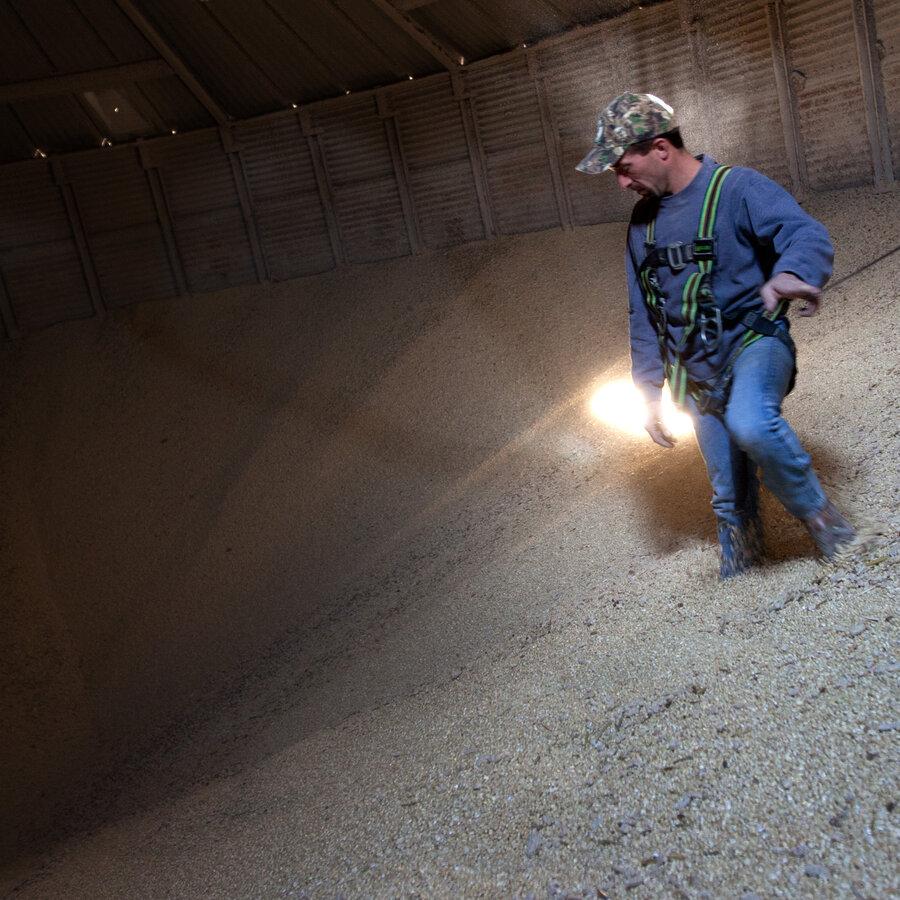 Buried In Grain
