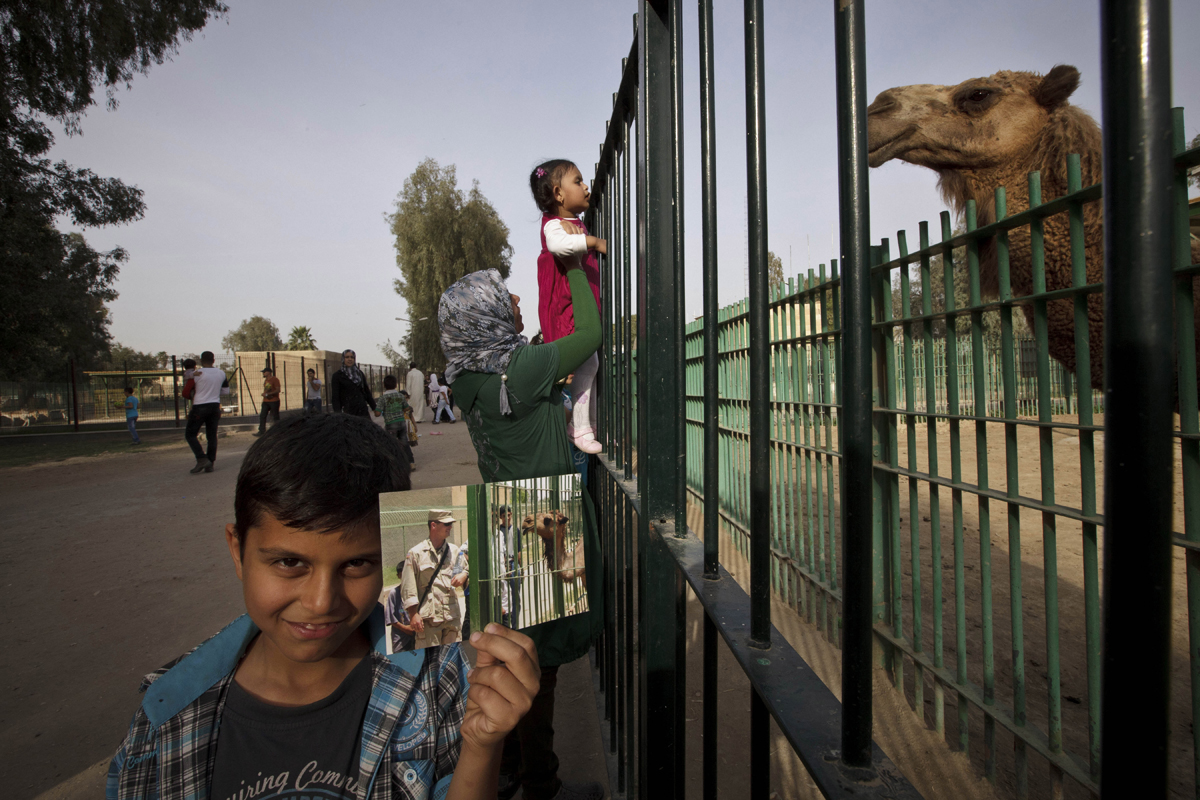 Abdullah, 8, poses with a 2003 photograph taken by Niko Price, showing a U.S. soldier visiting the newly opened zoo. The zoo was destroyed during the 2003 U.S.-led invasion. Only a handful of animals survived, and later the grounds were used as a holding facility for looters detained by U.S. soldiers. It reopened later in 2003 and today houses more than 1,000 animals.