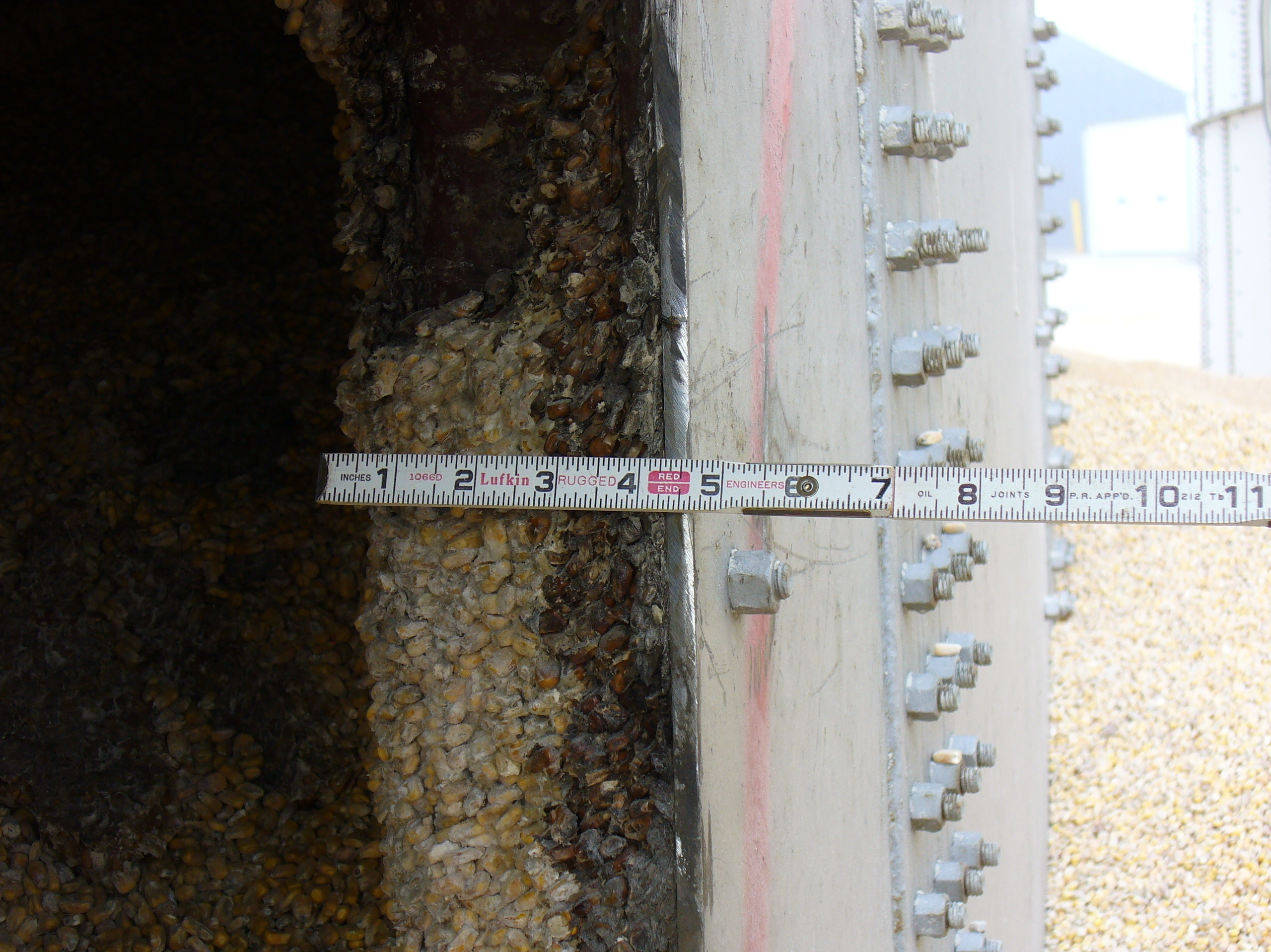 OSHA investigators took this photo of crusted corn, also known as bridged corn, stuck to the side of Haasbach's Bin No. 9 shortly after the July 2010 deaths. Working under bridged corn is prohibited by federal law because it can peel away without warning and trap workers.
