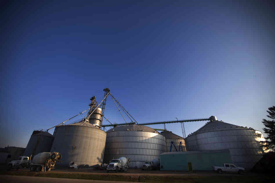 Two young workers died in flowing corn at this commercial grain storage complex in Mount Carroll, Ill., in 2010. OSHA regulates 13,000 commercial grain bins like these. But grain bins on 300,000 family farms are largely exempt from OSHA regulations.