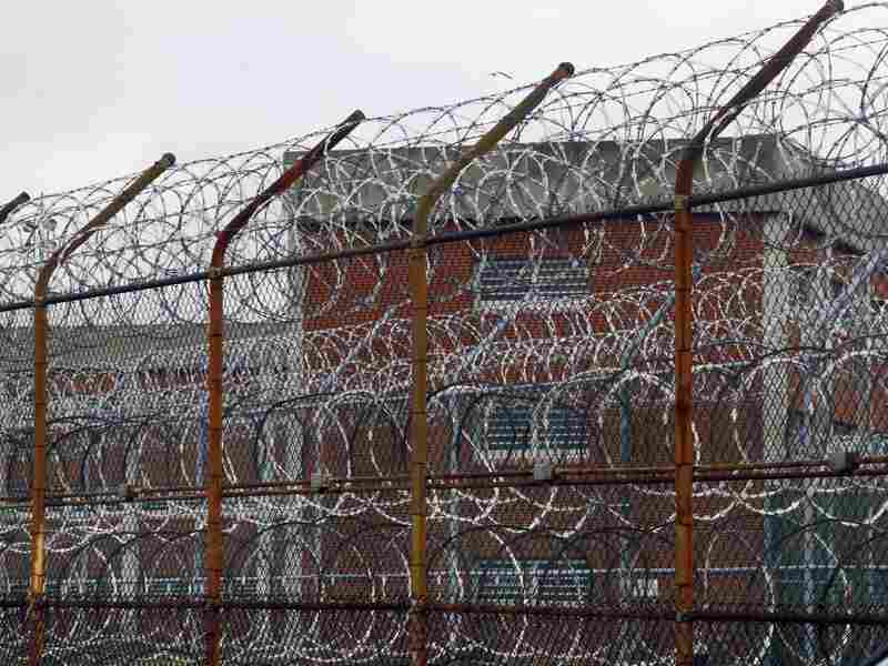 About half the juvenile offenders released from prison on Rikers Island in New York return within a year, New York City Department of Corrections Commissioner Dora Schriro says.
