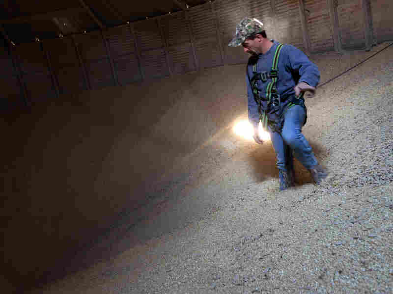 Grain Operator Austin Clubb surveys corn inside the Homestead Grain Facility at Amana Farms near Cedar Rapids, Iowa.