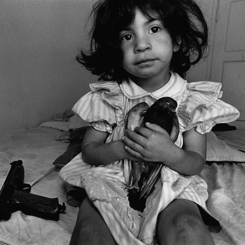 "Three-year-old ""Esperanza"" named her pet pigeon after her wheelchair-bound teenage uncle in Watts, Los Angeles. He was shot by a rival gang member in a drive-by shooting. 1994."