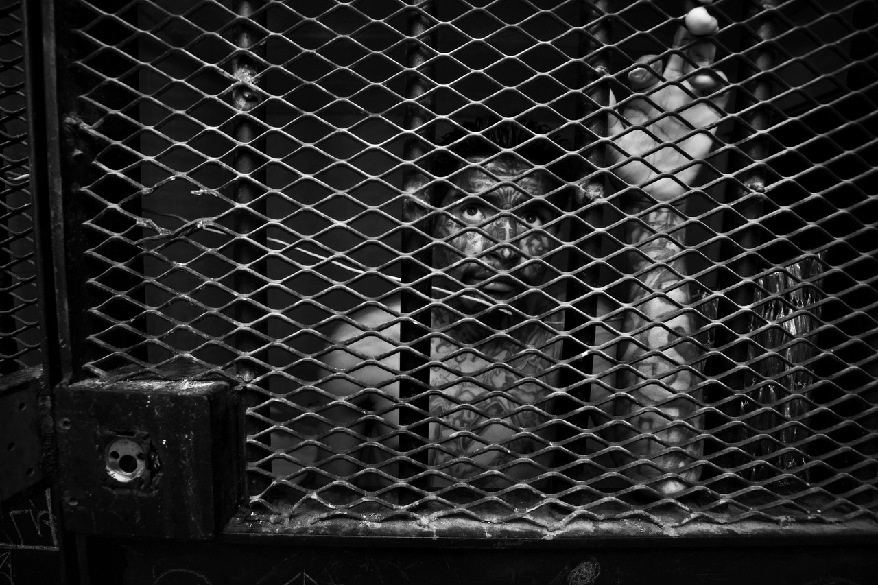 A gang member in an isolation cage -- in the special block for prisoners who have been threatened by other inmates -- at the maximum security prison Granja Penal de Pavon, Guatemala, 2009.
