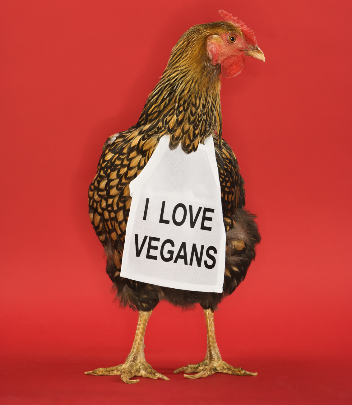 Want To Help Animals? No Vegan Extremism Required
