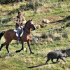 Ramiro Maura hunts wild boar at his ranch near Madrid in February.