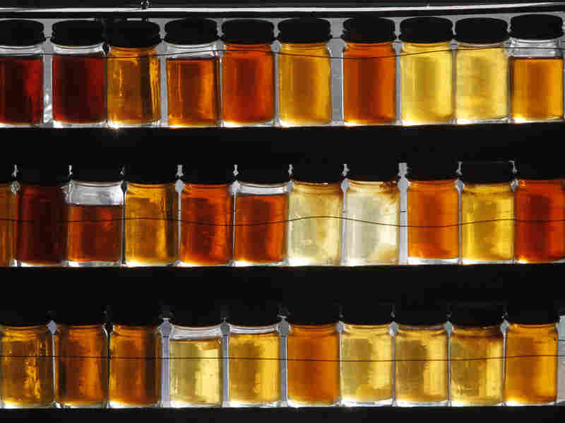 Eighteen different grades of maple syrup are displayed in East Montpelier, Vt.