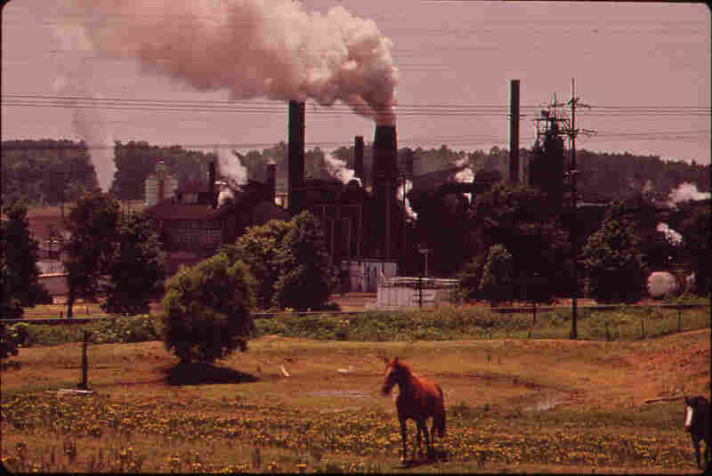 The Atlas Chemical Co. belches smoke across pastureland, 1972.
