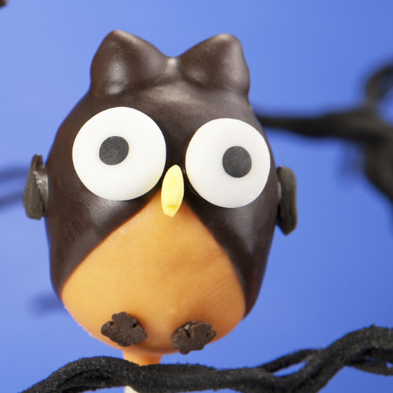 Owl-shaped cake pops