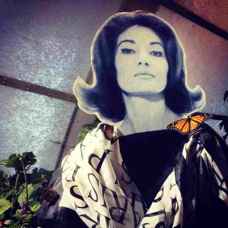 Recalling her days on stage as Puccini's tragic Cio-Cio-San, Callas felt right at home in the (Madama) Butterfly Pavilion at the Smithsonian's Natural History Museum.