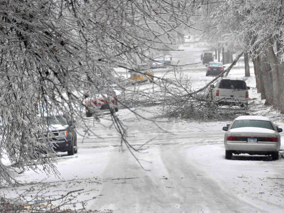 Where is spring? Icy branches partially blocked a city street Wednesday in Sioux Falls, S.D. More wintry weather is expected there Thursday.