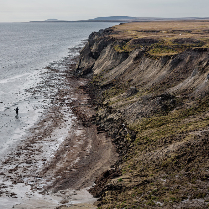 A tusk hunter scours the coast of Bolshoy Lyakhovsky Island in northern Russia. Lured by rising prices for mammoth ivory, hundreds of men cross the frozen Arctic seas each spring to search for it along eroding shorelines.