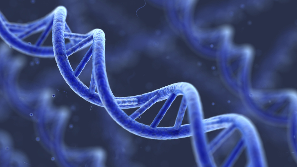 Artist's representation of DNA. (iStockphoto.com)