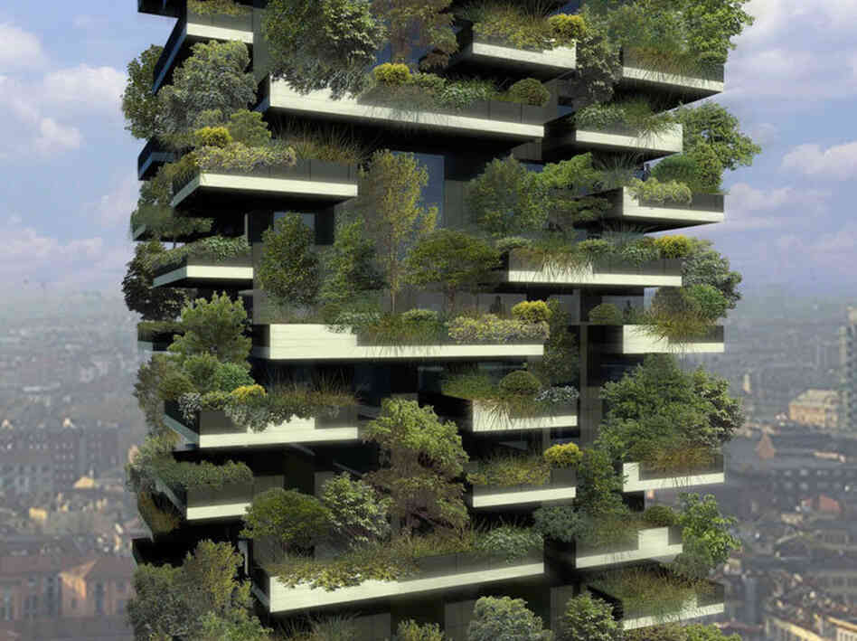 trees on top of skyscrapers yes yes say i no no says tim krulwich wonders npr. Black Bedroom Furniture Sets. Home Design Ideas