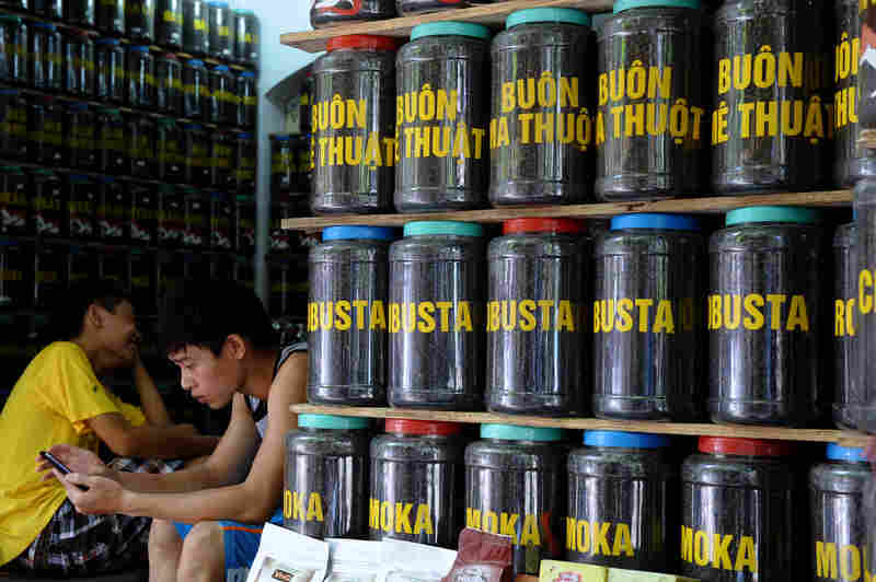 Vietnamese farmers grow a species of coffee tree called robusta. It grows fast and produces a big crop, but the bean has a bitter taste. Pictured is a coffee shop in Hanoi, Vietnam.