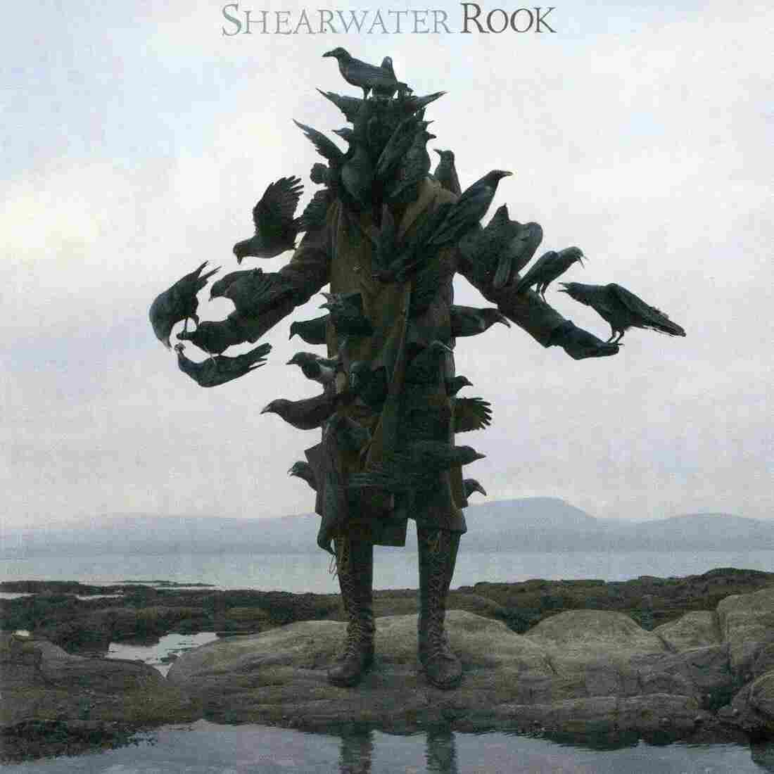 Shearwater's Rook cover