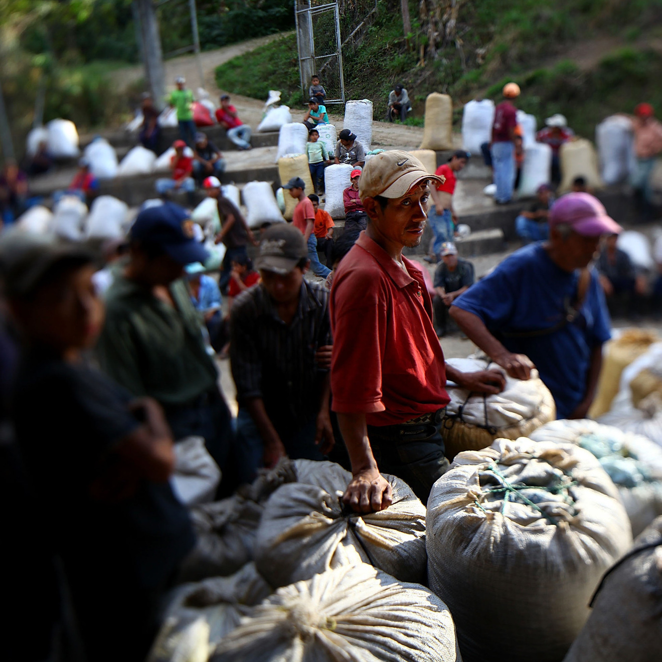 Coffee pickers wait to get paid at the end of the day in Huehuetenango, Guatemala.