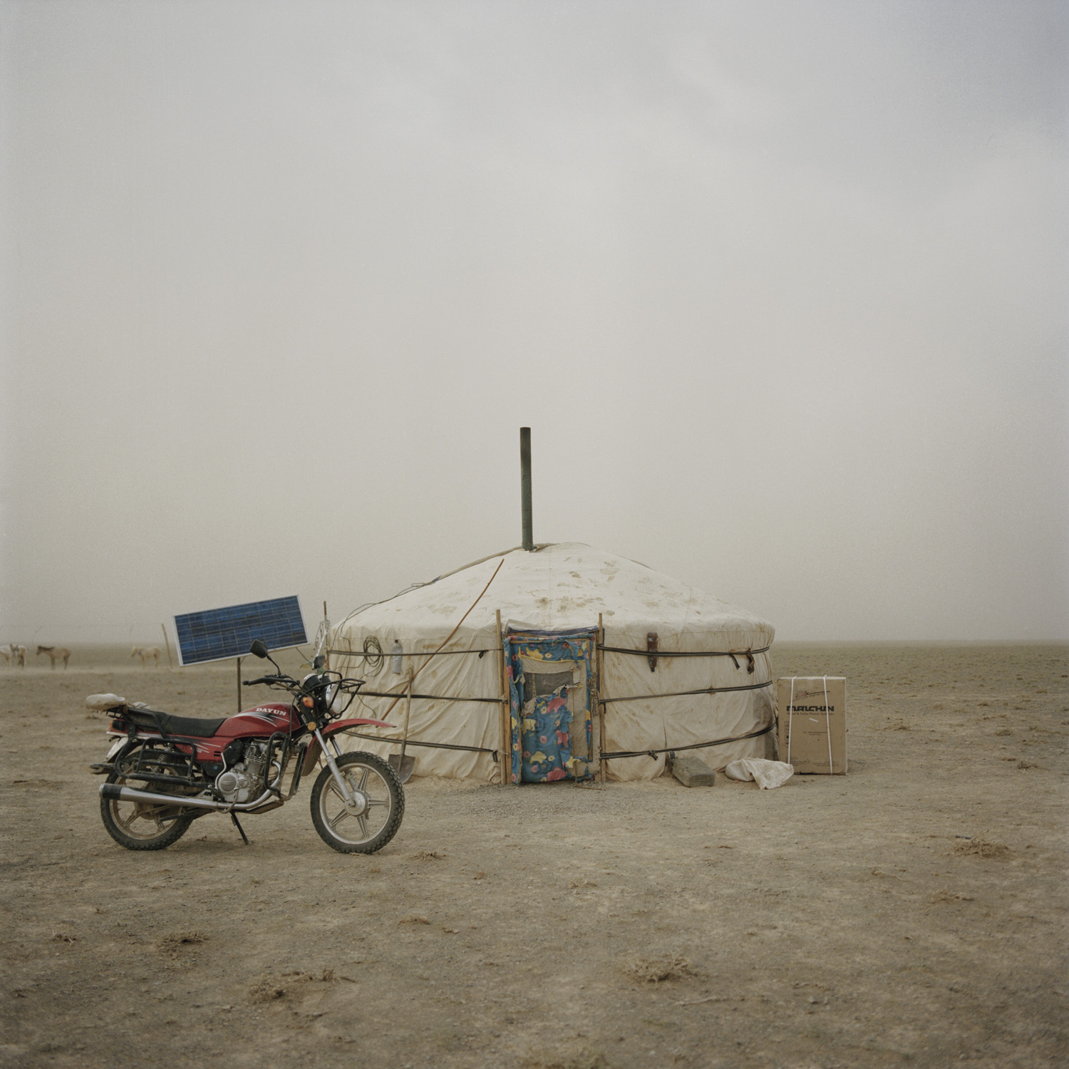 The ger where the nomad family lives. Mongolia, Gobi, Omongovi, 2012.