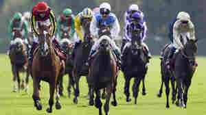 French jockey Olivier Peslier celebrates a win at Longchamps racecourse near Paris in 2012. While many drugs can legally be used on horses in U.S. racing, they are barred in Europe.