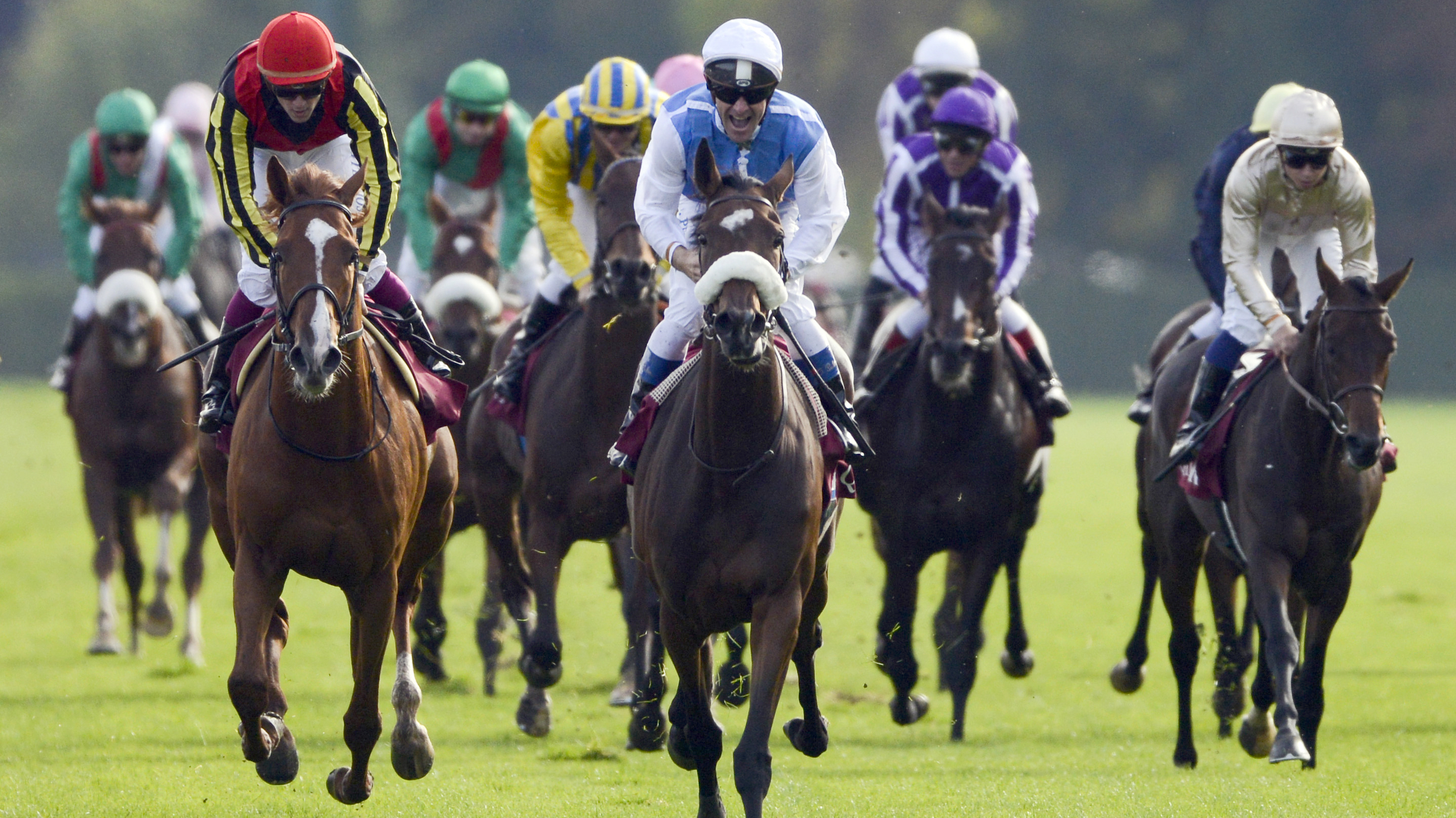 how to win pick 3 horse racing
