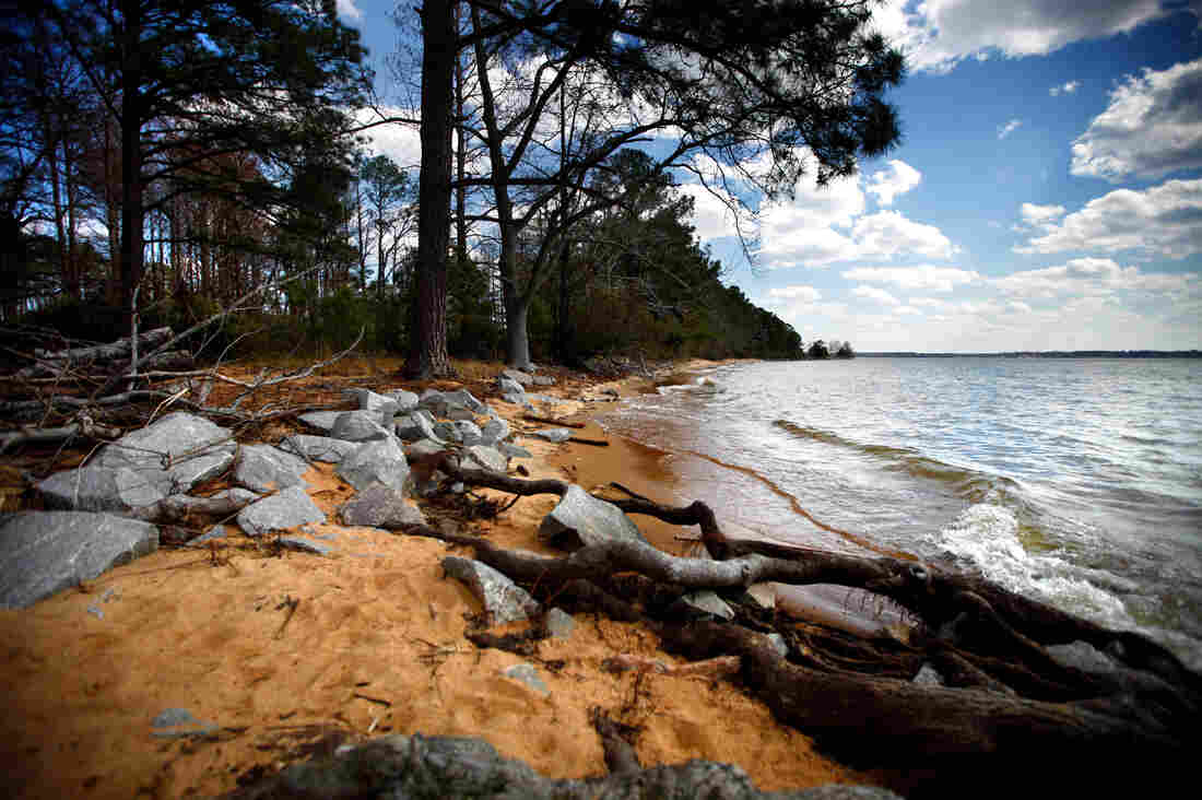 Colonists built the original glass-blowing kiln in Jamestown, Va., at this beach for easy access to the sand. Now the site is just inches above the water level.