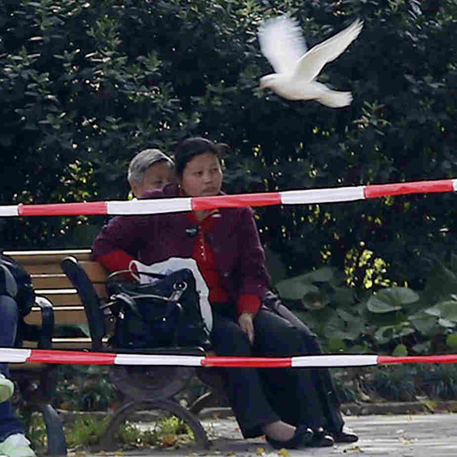 People sit near pigeons at a park in Shanghai where more than 30 human cases of bird flu have been reported.