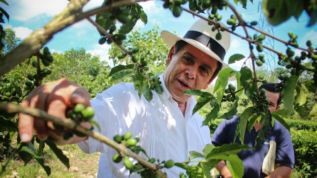 Eduardo Somarriba is a researcher at the Center for Tropical Agricultural Research and Education in Turrialba, Costa Rica.