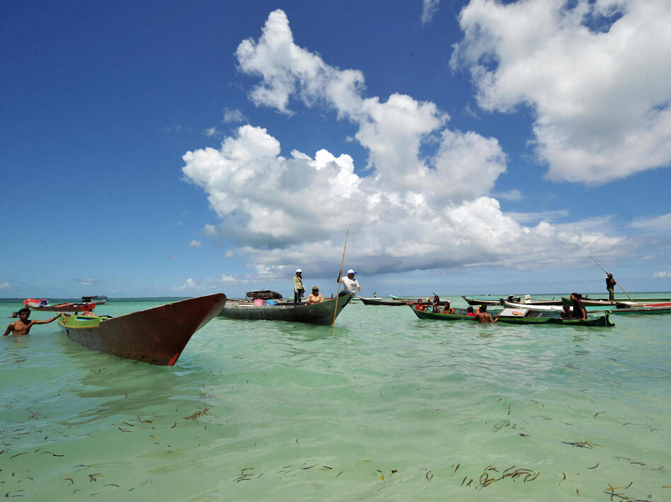 Fishermen arrive on Wakatobi island in Sulawesi waters off eastern Indonesia in 2009. In the 19th century, the island's rich and unique biodiversity helped Wallace understand how species adapted to their environment — and how regions are defined by the animals that live in them. (AFP/Getty Images)