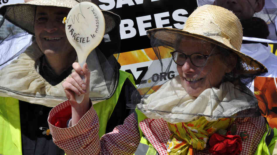 Beekeepers demonstrate at the EU headquarters in Brussels Monday, as lawmake